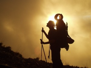 A woman hiker gazing up a slope, back-lit by the sun.