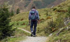 A male backpacker walking on a path through a meadow.
