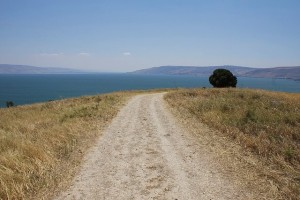 A dirt road leading toward the Sea of Galilee.