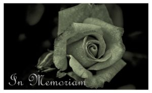 "A carved stone rose with the words ""In Memoriam."""