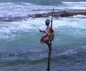 A lone fisherman perched on a small stilt platform in Sri Lanka.