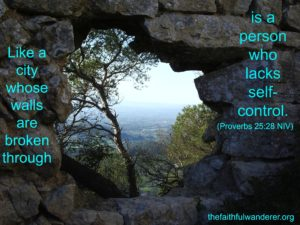 A large hole in a stone wall, revealing trees and a faraway valley outside. The words are from Proverbs 25:28 (NIV)
