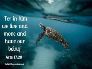 For in him we live and move and have our being