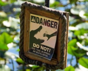 A sign warning people not to go near the wild alligators.