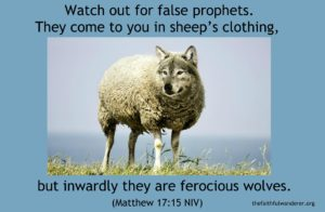 A wolf's head added onto a sheep's body.