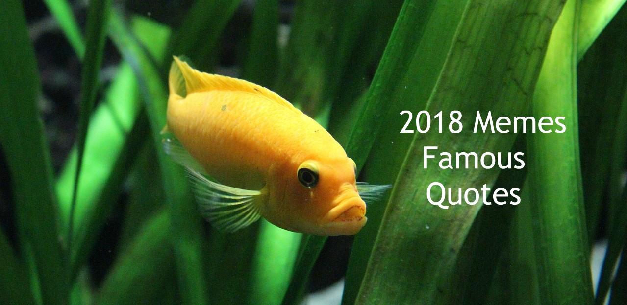 2018 Memes: Famous Quotes » The Faithful Wanderer